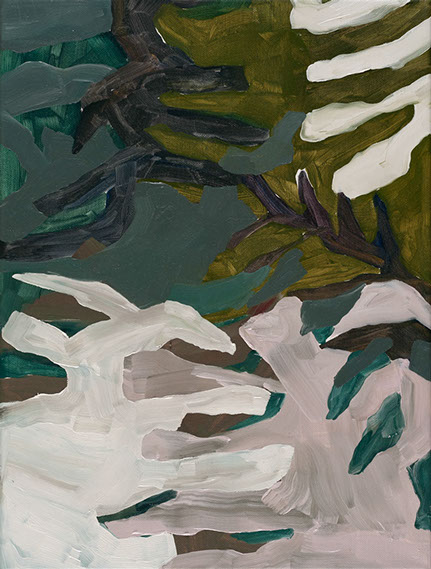 Ferns, 2017, 30x40cm, oil on canvas